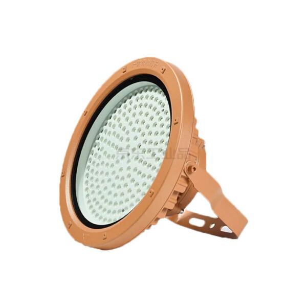 汤姆逊 低压防爆投光灯,100W;TMS-FB-100-D